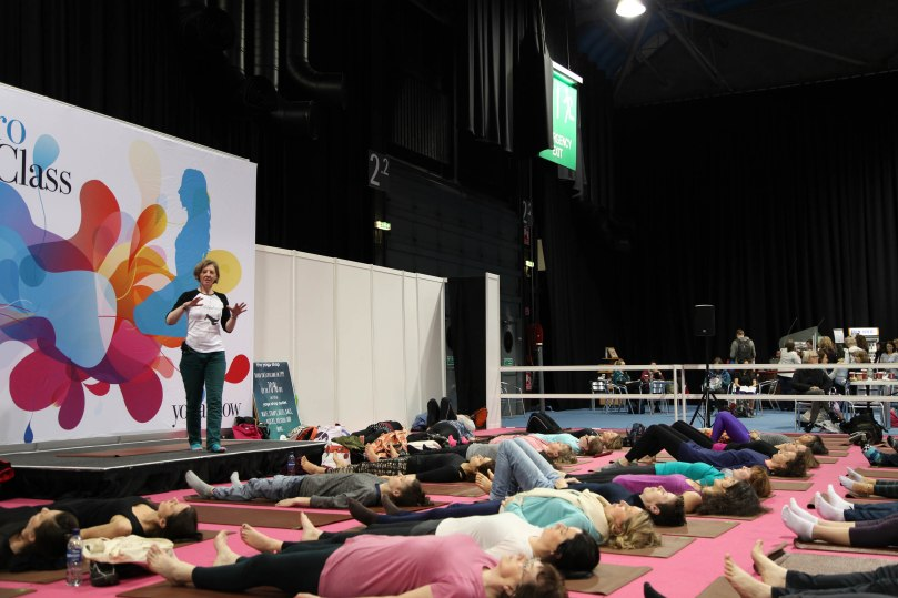 Awareness Through Movement yoga show 2016